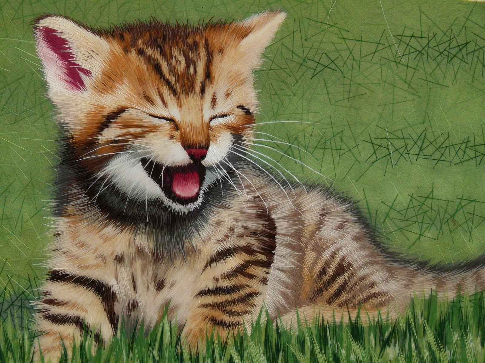 worlds best cat litter target